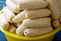 Freezing Corn